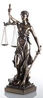 Dava Avukatlığı