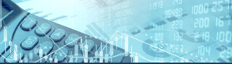 Muhasebe ve Finansal Raporlama Hizmetleri